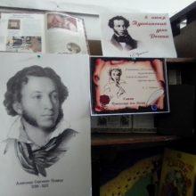 дубровская библиотека